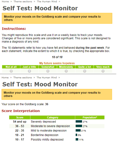 Self Test Mood Monitor Website