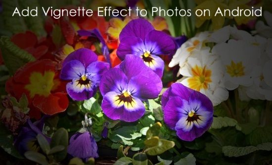 add vignette effect to photos