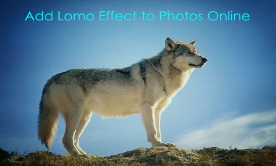 lomo effect