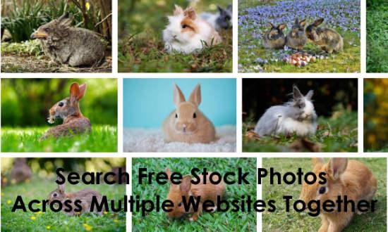 search free stock photos