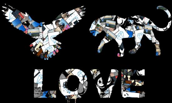 Shape Collage Maker Software for Windows