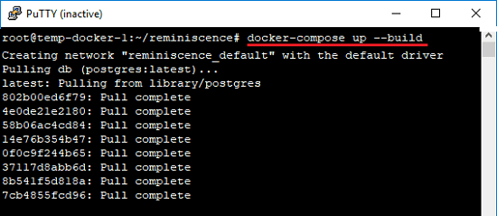 Docker command to start the remeniscence