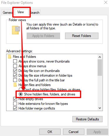 enable show hidden files folders option in file explorer options window