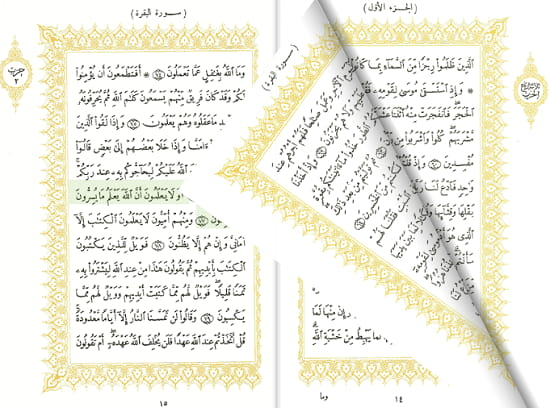 Read Quran Online for Free on These free Websites