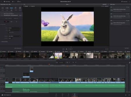 davinci resolve video editor for YouTube