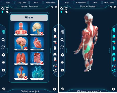 free 3D Human Anatomy Android app