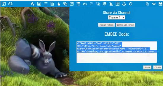 Luma One Embed Code