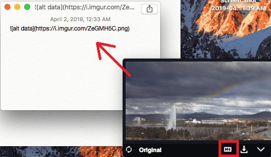 Dragula copy markdown code