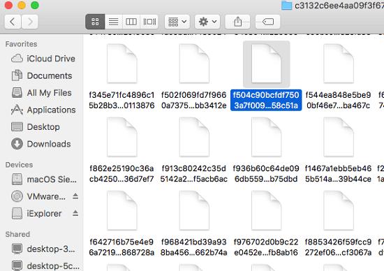 Iphone backup files