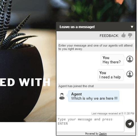 Zestim chat window