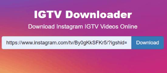 Download IGTV videos online