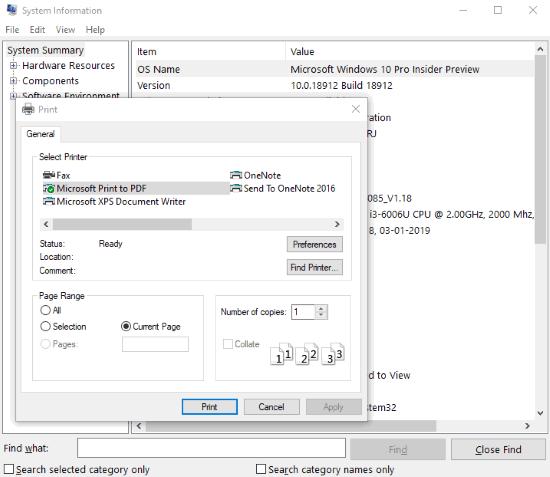Microsoft system information tool and virtual printer