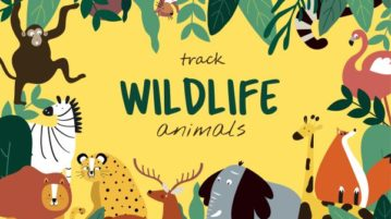 Interactive Wildlife Map to Track Species by Location, Biodiversity Facets