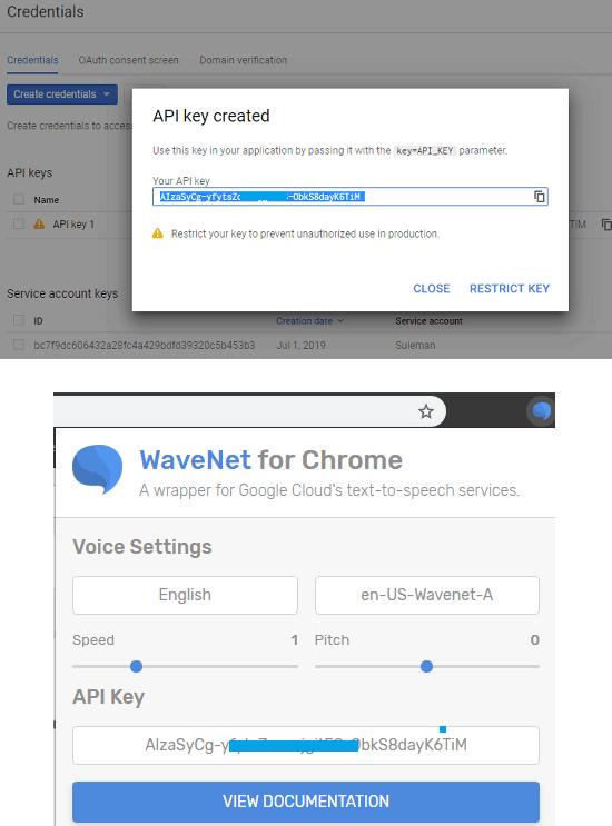 Add API key in wavenet for chrome