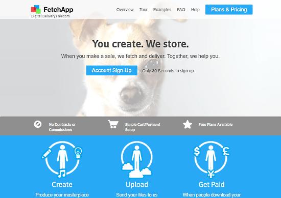 Online Platforms to Self Publish Your Book fetchapp