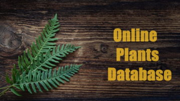 online plants database free