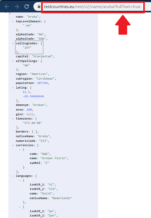 REST Countries API Syntax for Full Name