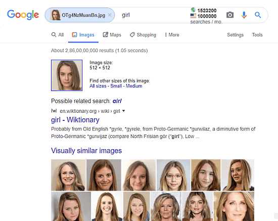 google images face search engine