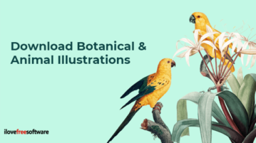 Download Botanical and Animal Illustrations