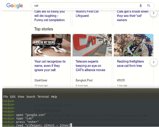 Automate Browser Tasks with WYSIWYG Scripting Language