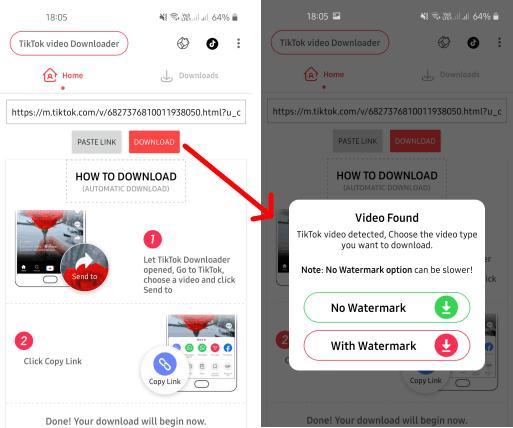 tiktok video downloader in action