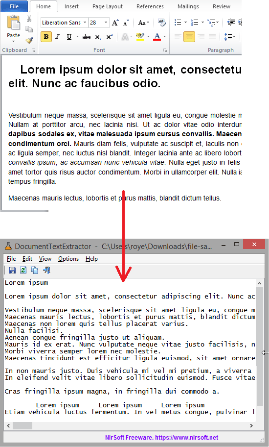 document text extractor in action