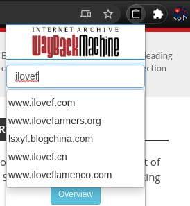 wayback machine search