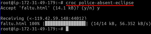 croc recieve files