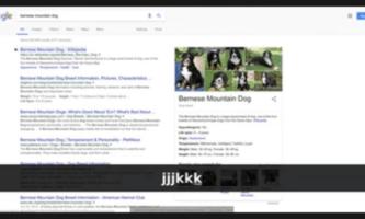 Add Keyboard Shortcuts to Google, Amazon, YouTube: Web Search Navigator
