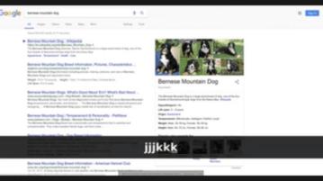 Web Search Navigator Add Shortcuts to Google YuTube