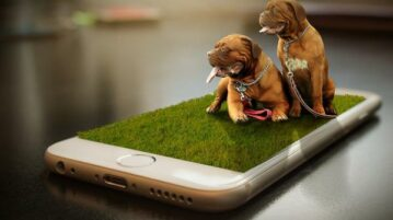 Free App for Pet Owners to Manage Pet Activities and Events DogNote