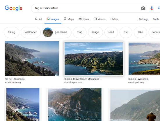 google image search without GooglePanicImages