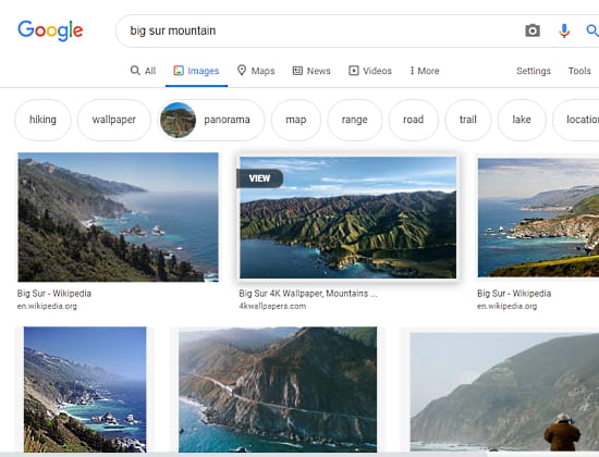 google image search with GooglePanicImages