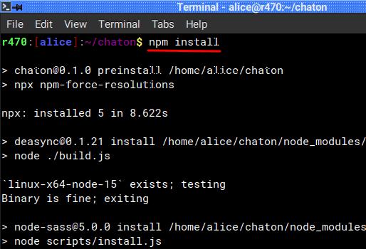 chaton npm install