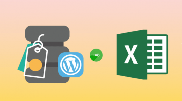 Get all WordPress Tags List in Excel