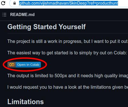 DeepSkin Colab Link