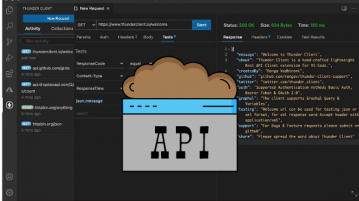Postman Alternative for VS Code to Make API Requests Thunder Client