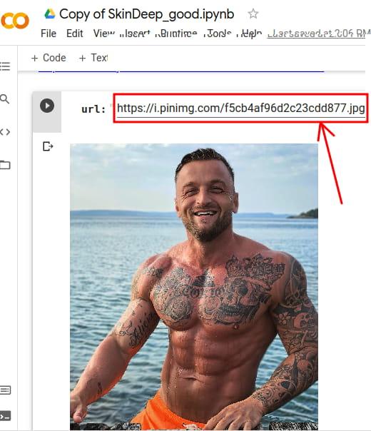 SkinDeep input image