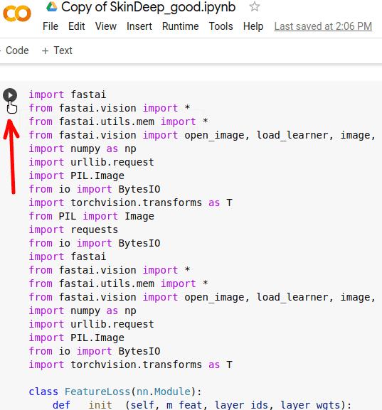 SkinDeep run main code