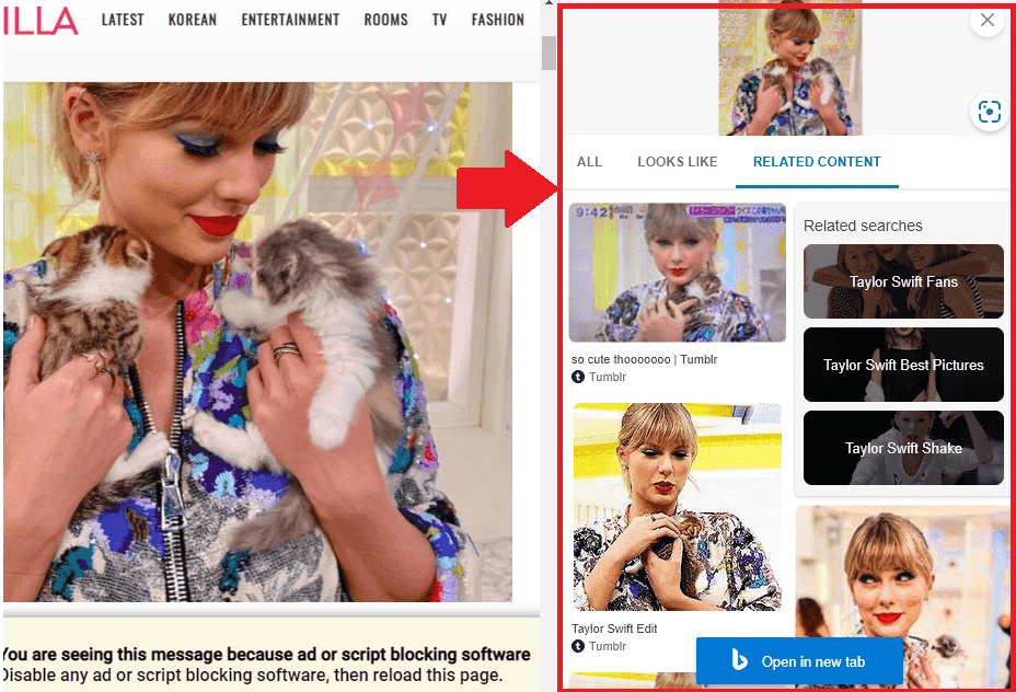 Sidebar search results Reverse image search ms edge