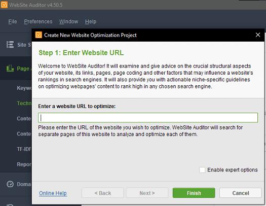 Free Core Web Vitals Auditor UI
