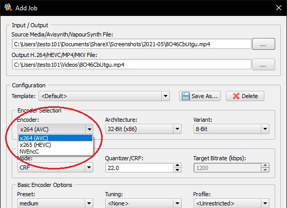 Simple x264 x265 Launcher job settings