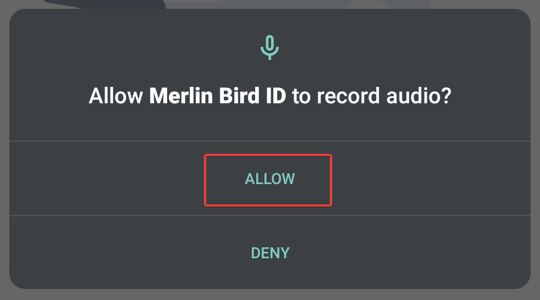 Allow access to record audio